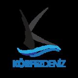https://rdmedya.com/wp-content/uploads/2020/04/logo_5dece43f5ba2c3ebbd194ebae8da0d3a_2x-160x160.png
